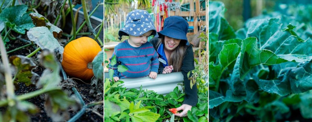 Creative Garden Early Learning Mount Annan