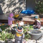Creative Garden Centenary Heights Early Education in Toowoomba